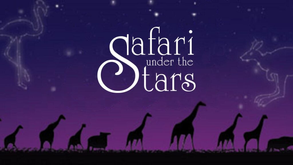 safari-under-the-stars